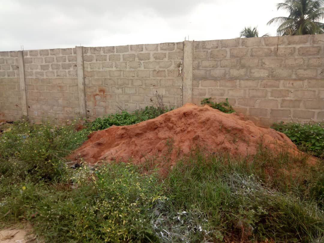 N° 4291 :                         Terrain à vendre , Sagbado, Lome, Togo : 7 000  000 XOF/vie
