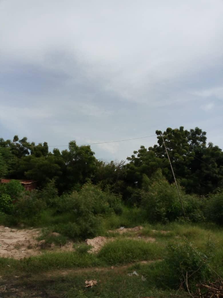 Terrain à vendre , klikame                         (Derrière l'école primaire de Klikamé)                     , Lome : 30 000  000 FCFA