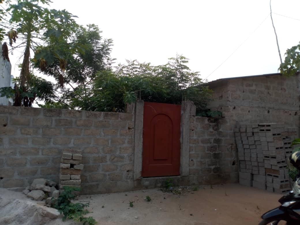 N° 4473 :                         Terrain à vendre , Zanguera, Lome, Togo : 8 000  000 XOF/vie