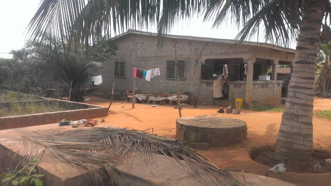N° 4439 :                             Terrain à vendre , Zanguera, Lome, Togo : 20 000  000 XOF/vie