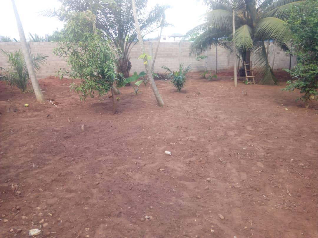 Terrain à vendre , adidogome                         (Attilamonou à 900m du goudron)                     , Lome : 8 000  000 FCFA