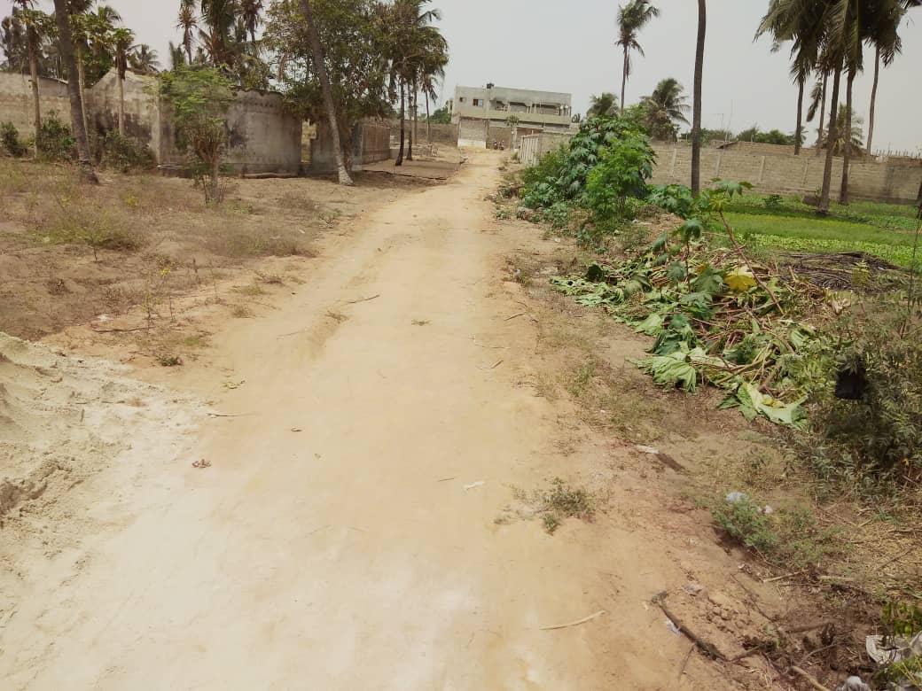 N° 4913 :                             Terrain à vendre , Avepozo, Lome, Togo : 10 000  000 XOF/vie