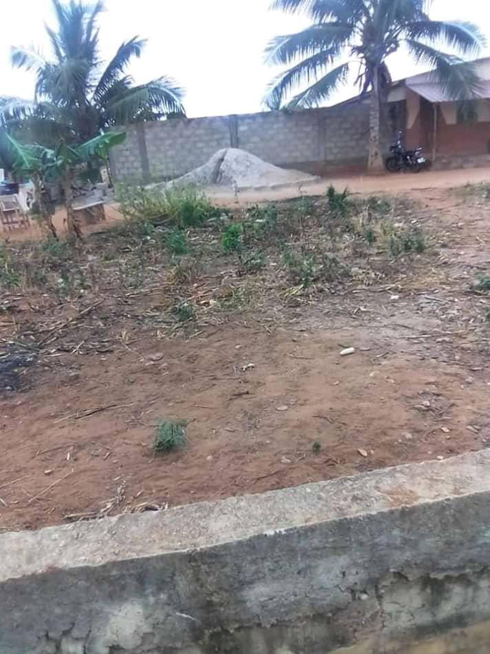 N° 5062 :                             Terrain à vendre , Zanguera , Lome, Togo : 7 000  000 XOF/vie