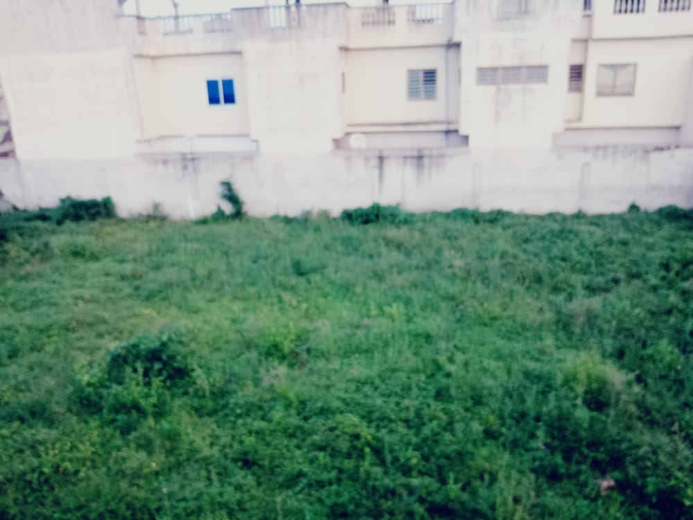 N° 5065 :                             Terrain à vendre , Leo2000, Lome, Togo : 35 000  000 XOF/vie