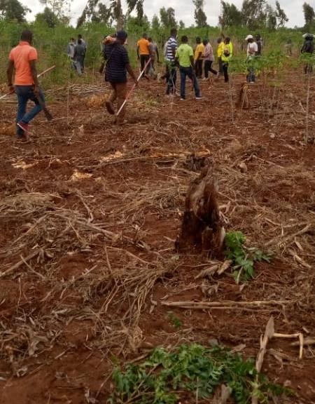 N° 5125 :                             Terrain à vendre , Davie , Tsevie, Togo : 4 500  000 XOF/vie