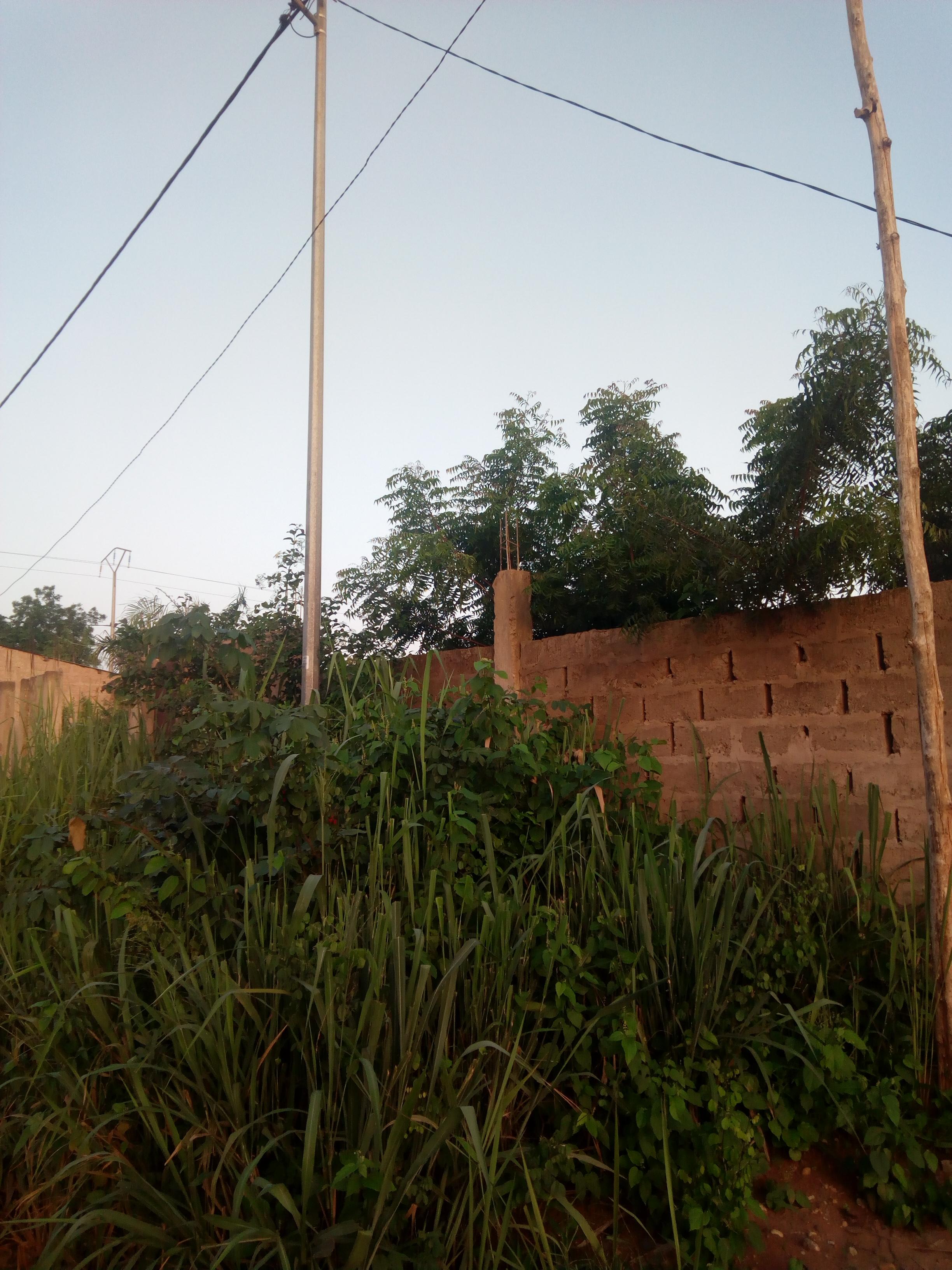 Terrain à vendre , zanguera                         (Non loin de l'église catholique Klémé)                     , Lome : 8 000  000 FCFA