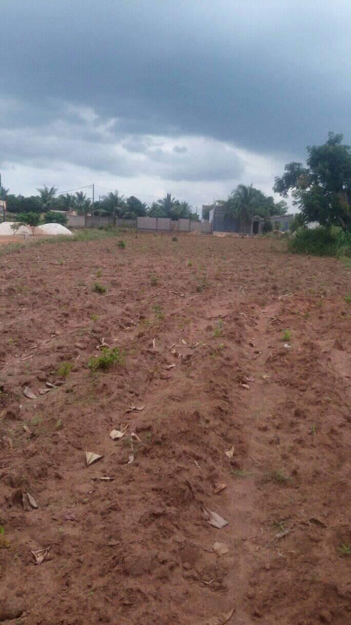 N° 4894 :                         Terrain à vendre , Adetikope, Lome, Togo : 9 000  000 XOF/vie
