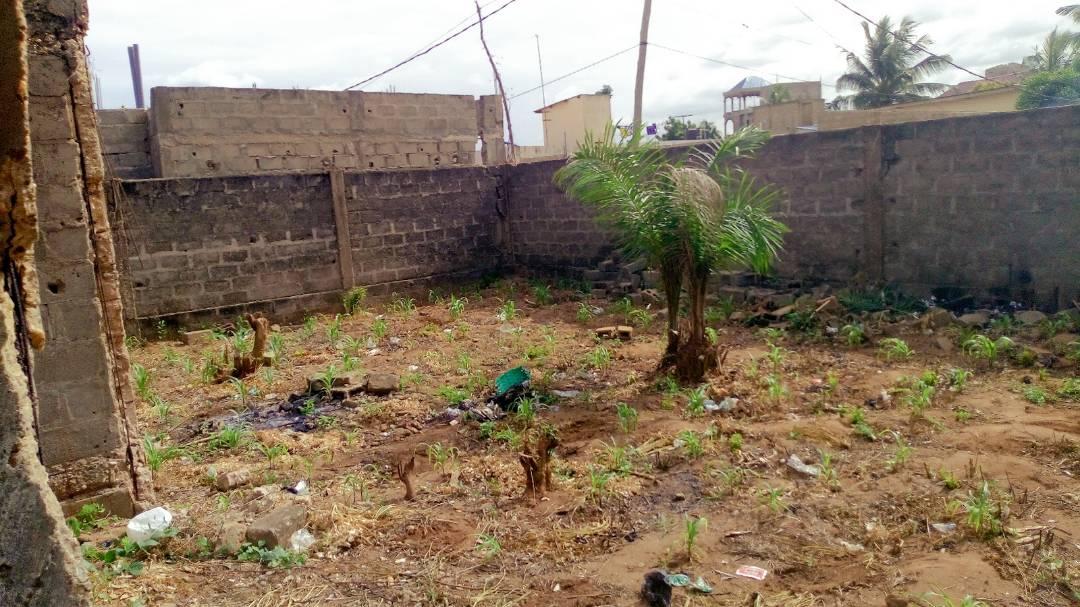 N° 4149 :                             Maison à vendre , Amadahome, Lome, Togo : 20 000  000 XOF/vie